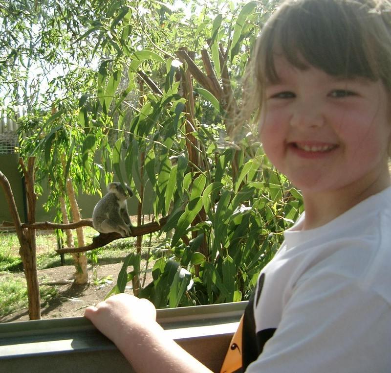 Hannah_koala_2